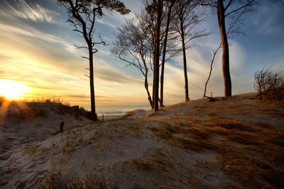 Bodden Nationalpark, Bild: Enrico Heuer  / pixelio.de